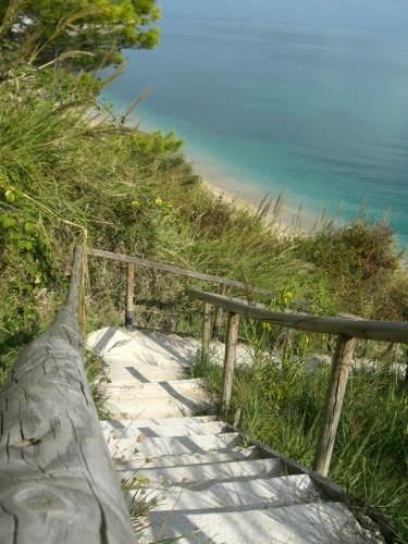 verso la spiaggia.... - Sirolo (3670 clic)