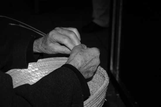 Ultimo canestriere - Modica (2972 clic)
