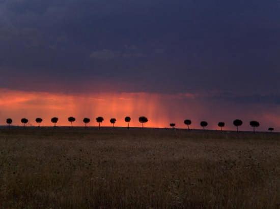 Tempesta sul tramonto  - Gallipoli (5791 clic)