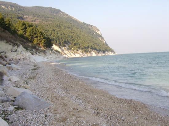 spiaggia d'inverno sirolo (3133 clic)