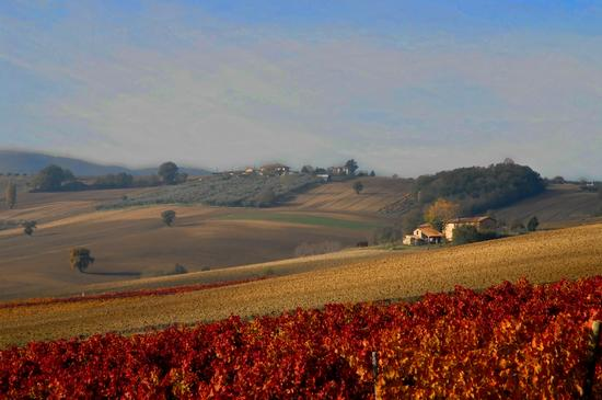 Autunno in Umbria - Giano dell'umbria (5809 clic)