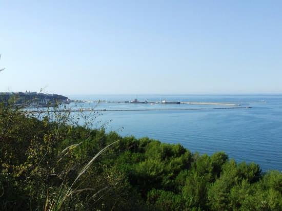la pineta dell'acquabella - Ortona (2107 clic)