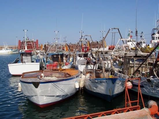 la flottiglia della piccola pesca - Ortona (2894 clic)