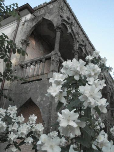 Casa di Riposo Maggiore Sebastiano Perugino  - Curinga (2799 clic)