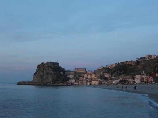 Scilla all'alba (3481 clic)