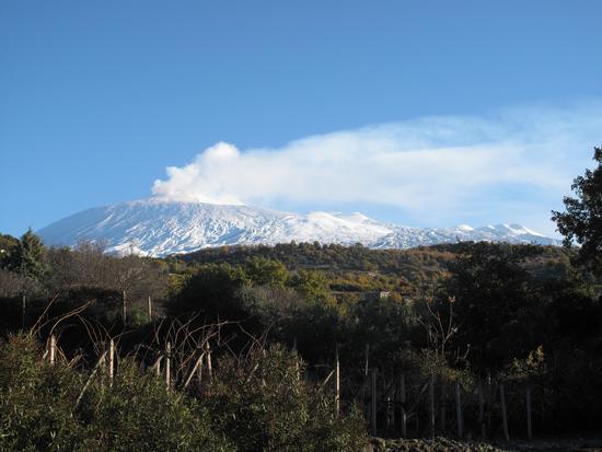 Etna in abito invernale - Biancavilla (3064 clic)