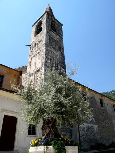 Campanile con ulivo e fiori - Tremosine (759 clic)