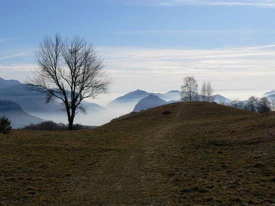 Nebbie serali  - Lugano (2269 clic)