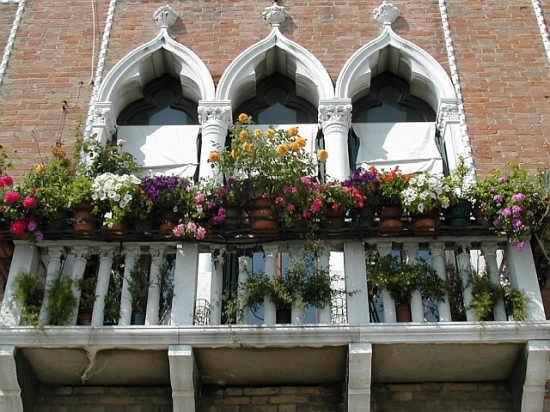 Balcone fiorito - Venezia (3379 clic)