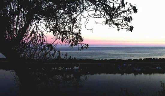 Costa mediterranea - Castelvetrano (3975 clic)
