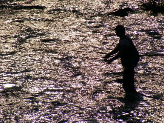 pescatore - Mondovì (2545 clic)