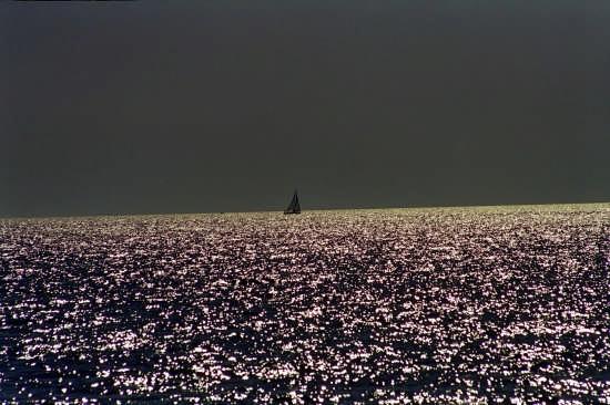 Mare d'argento - Gallipoli (3754 clic)
