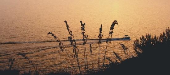 Sapri tramonto (2913 clic)