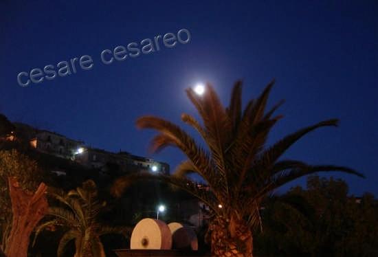 frantoio e luna - Curinga (2388 clic)