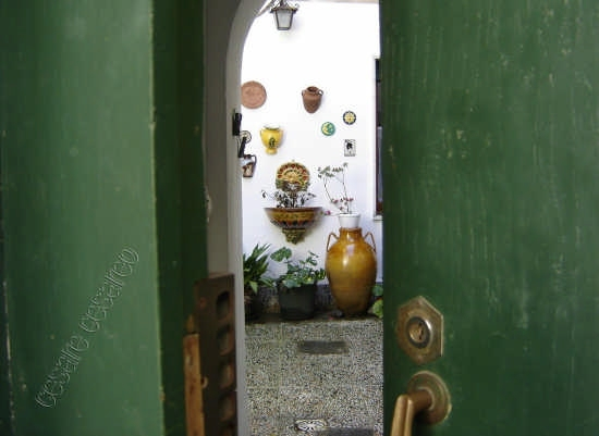 scorcio centro storico - Curinga (2711 clic)