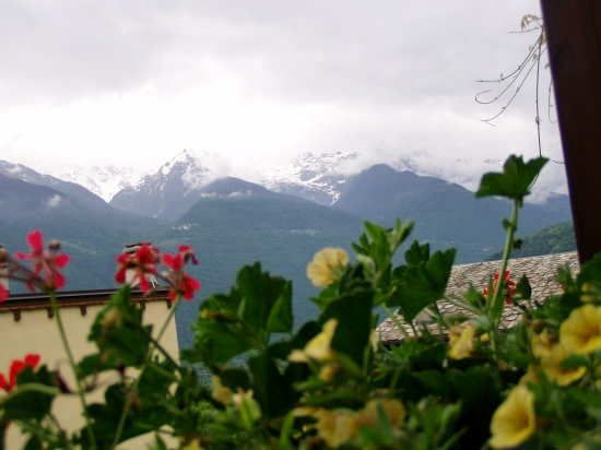 Tra fiori e montagne - Bianzone (3032 clic)