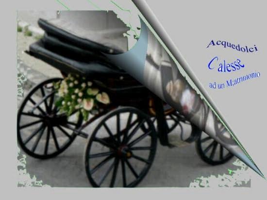 CALESSE ALLESTITO PER UN MATRIMONIO - Acquedolci (4807 clic)