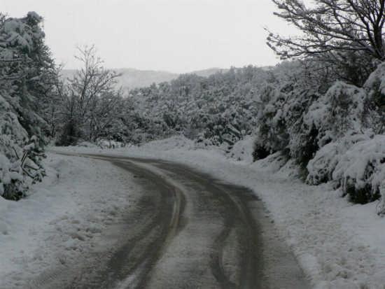 STRADA INNEVATA - Caronia (4105 clic)