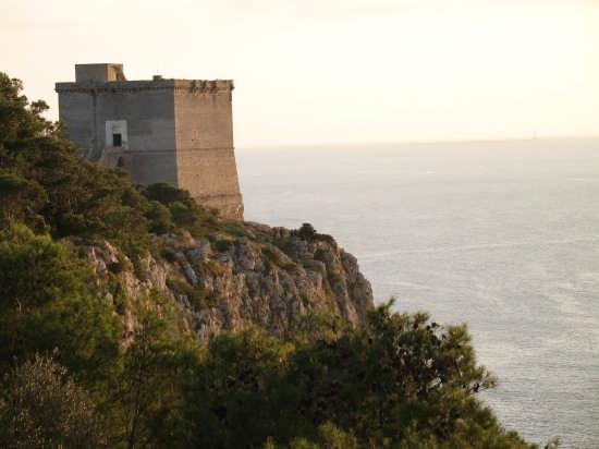 La Torre - Nardò (3889 clic)