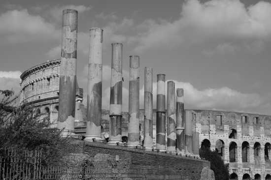 ROMA (2451 clic)