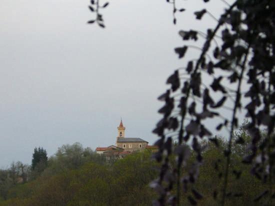 San Michele di Cervasca (2338 clic)