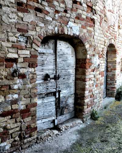 Cantina - Grottammare (2387 clic)