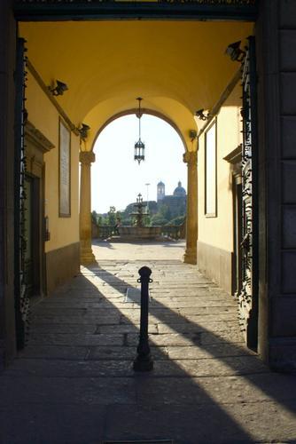 Viterbo (2182 clic)
