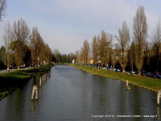 Il canae - Dolo (2968 clic)
