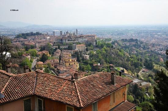 Città alta - Bergamo (367 clic)