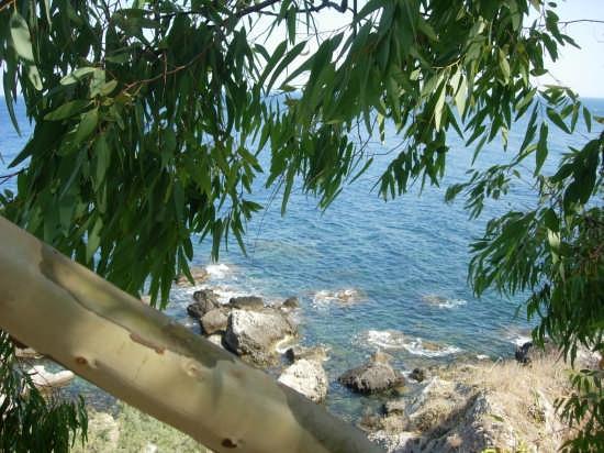 la scogliera - Sant'alessio (3061 clic)