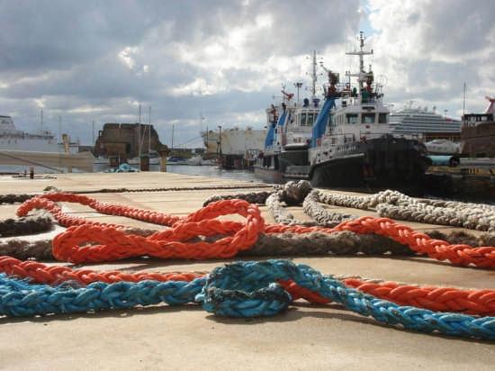 Gomene al porto di civitavecchia (3098 clic)