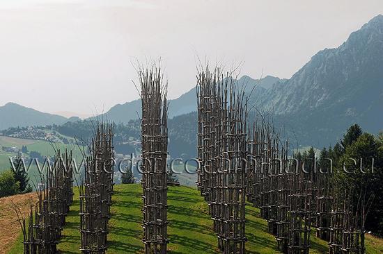 cattedrale vegetale, Oltre il Colle, Bergamo (345 clic)
