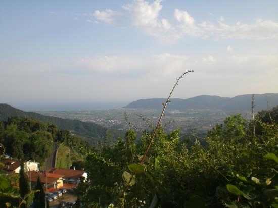 vista panoramica di bocca di magra  (sp) - Fosdinovo (2280 clic)
