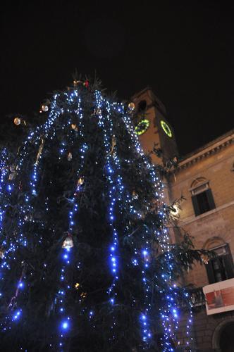 Pisa e il suo albero di Natale (2111 clic)