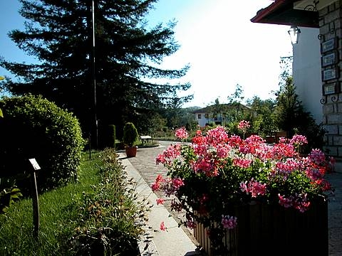 Il Parco di Mongiana (4401 clic)
