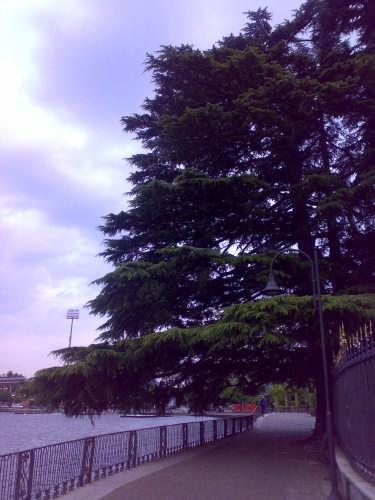 passeggiata dall'hangar a villa olmo - Como (2589 clic)