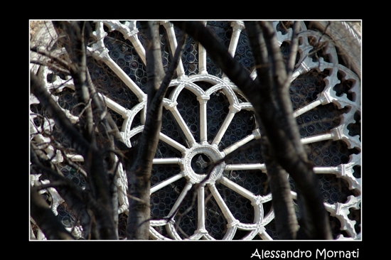 Trieste (2619 clic)