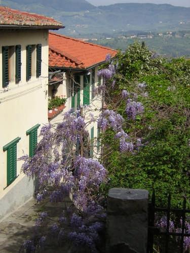 Belvedere San Francesco - Fiesole (2300 clic)