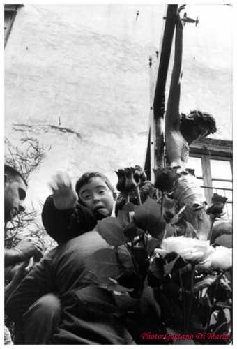 Piccolo devoto del SS. Crocifisso - Monreale (3528 clic)
