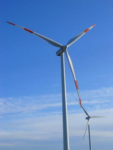 Energico abbraccio al vento - Lecce (2530 clic)