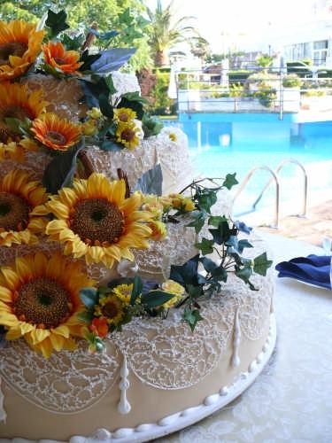 Dolce matrimonio - Lecce (3185 clic)