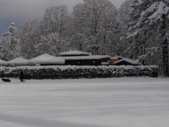 dicembre 2007 - Matelica (2709 clic)