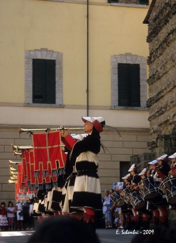 Giostra del Saracino 2009 - Arezzo (2502 clic)