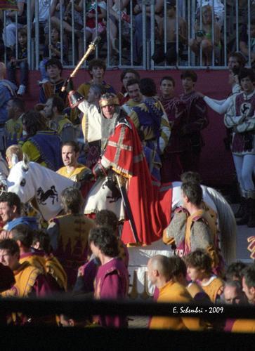 Giostra del Saracino 2009 - Arezzo (2438 clic)