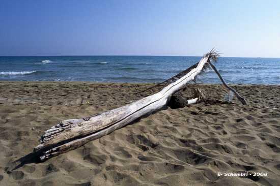 Spiaggia di Eloro (2914 clic)