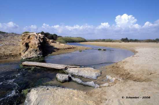 Foce del fiume Tellaro - Eloro (3511 clic)