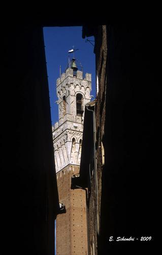 La torre del Mangia - Siena (1729 clic)