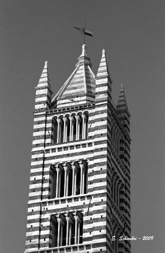 Il campanile della Cattedrale - Siena (1582 clic)