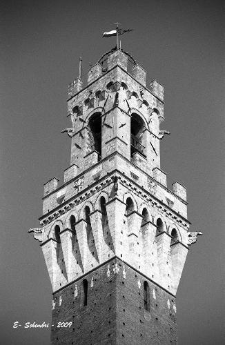 La Torre del Mangia - Siena (1720 clic)