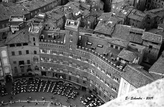 Scorcio di Piazza del Campo dalla Torre del Mangia - Siena (5211 clic)